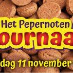Alternatieve Sinterklaasjournaals met Zwarte Piet bekijk je online